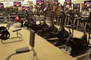Health Clubs & Gyms